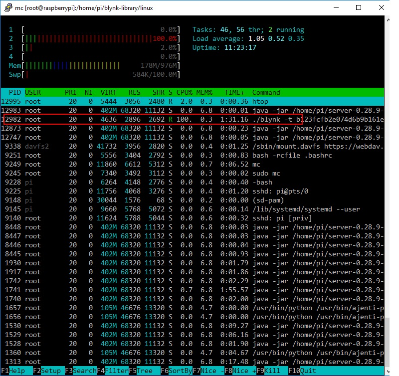 raspberry server client wiringpi runs slow cpu 100 local rh community blynk cc Disk Usage Usage XP